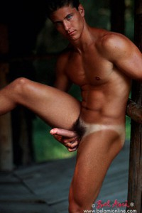 Muscle gay porn star Lukas Ridgeston